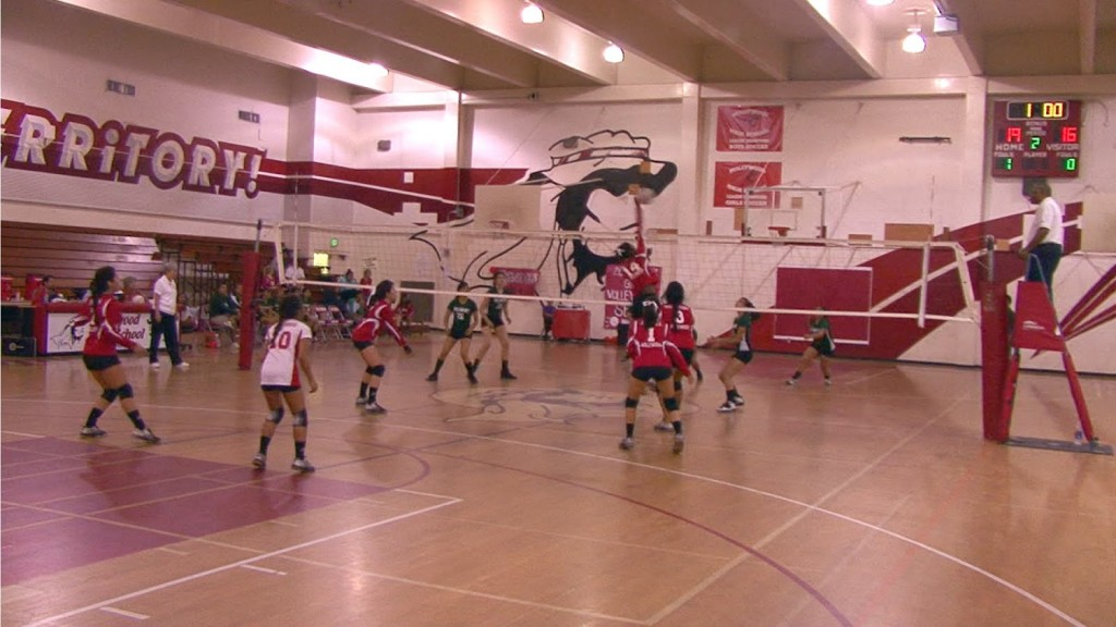 Seniors celebrate victory as volleyball advances to league finals