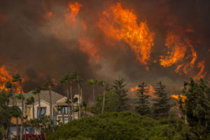 Wildfires in California have caused great destruction